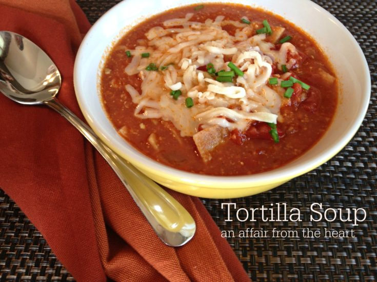 Not your Normal Tortilla Soup