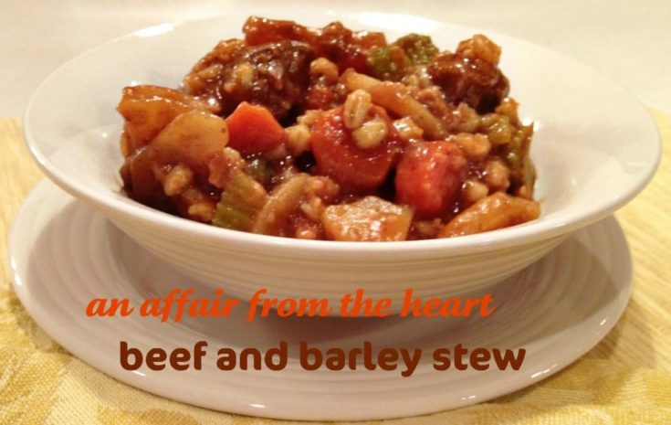 Close up of Beef and Barley stew in a white bowl