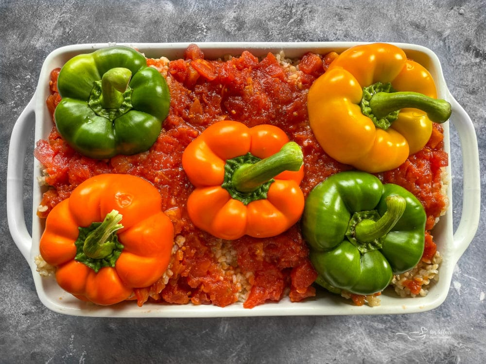 One dish filled with rice and peppers