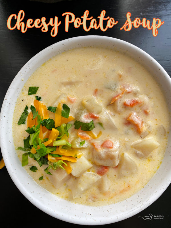 Top view of cheesy potato soup in white bowl