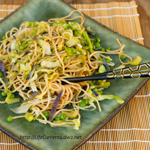 Chow Mein Noodles - Life Currents
