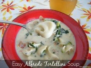 Easy Alfredo Tortellini Soup - Who Needs a Cape