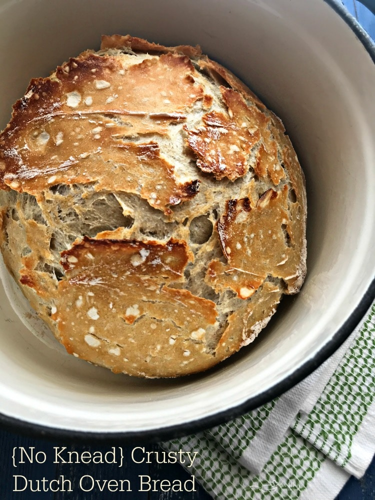{No Knead} Crusty Dutch Oven Bread
