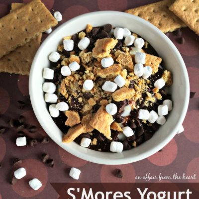 S'Mores Yogurt – Two Ways