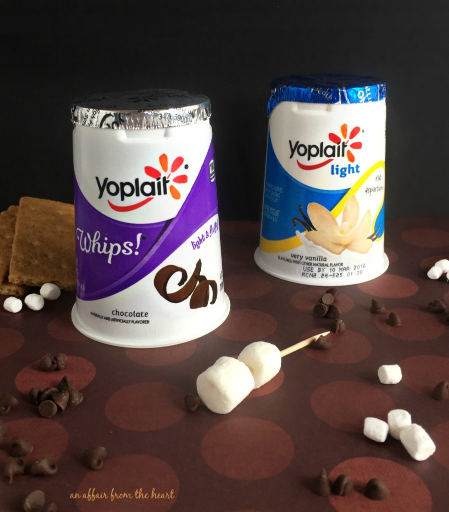 S'Mores Yogurt Two Ways