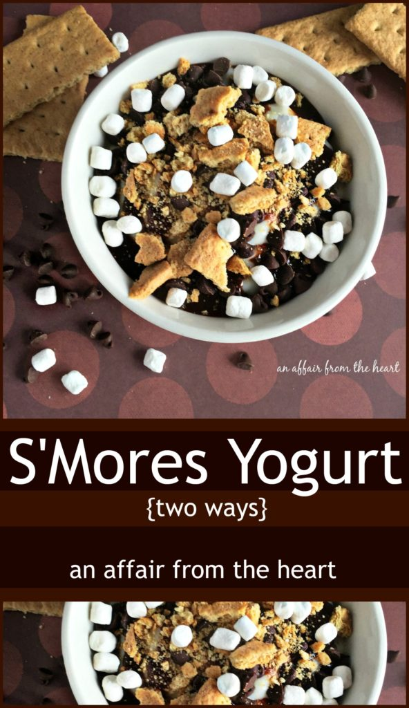 S'mores Yogurt Two Ways - An Affair from the Heart