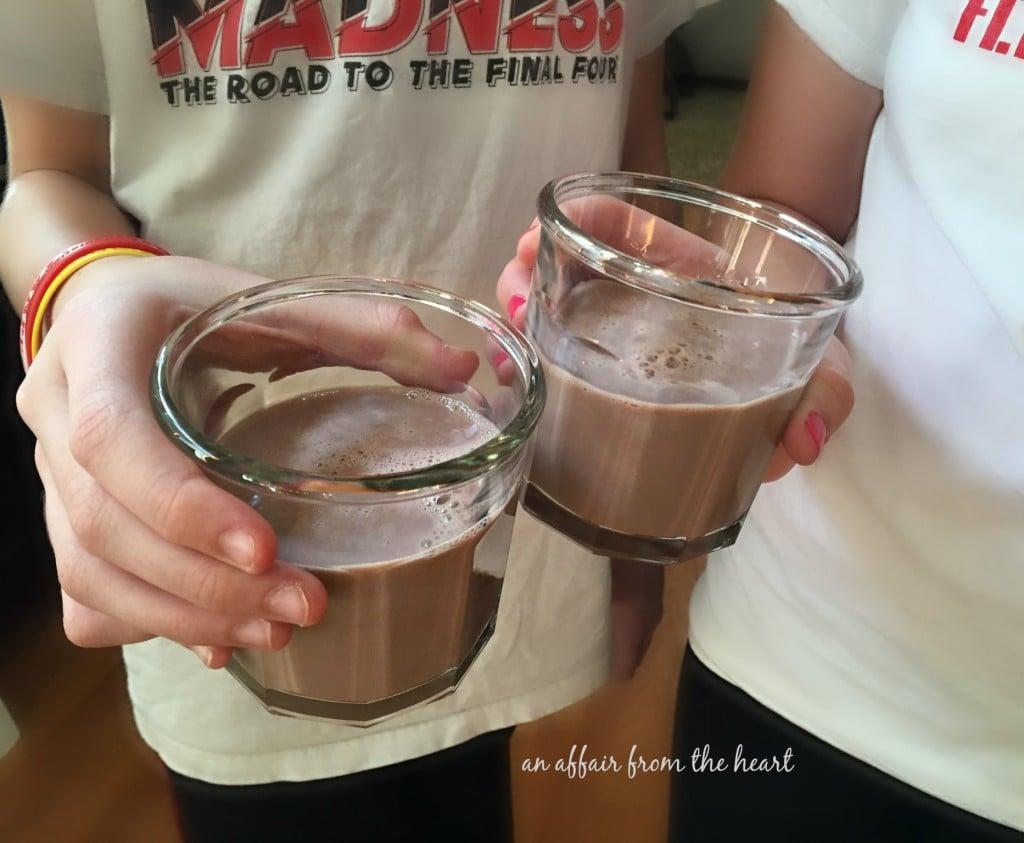 TruMoo Calcium Plus Chocolate Milk