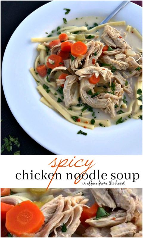 Spicy Chicken Noodle Soup - An Affair from the Heart
