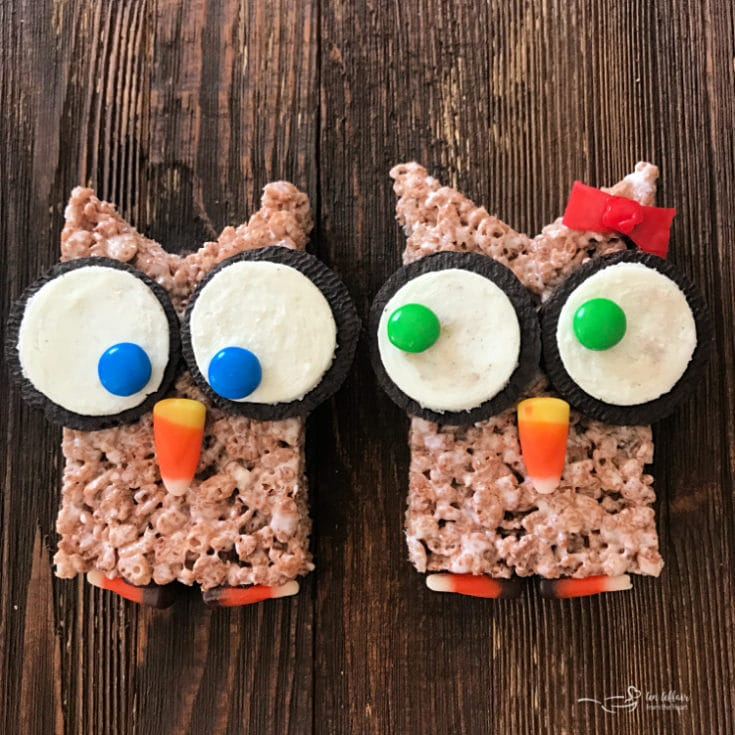 2 Cocoa Krispy Owls on a wood surface