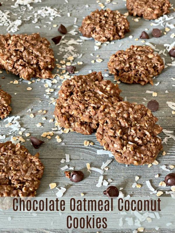 Chocolate Oatmeal Coconut Cookies HERO