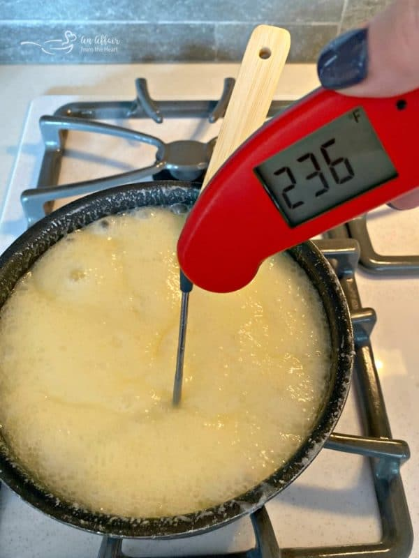 Never Fail Fudge Thermapen Soft Ball Stage