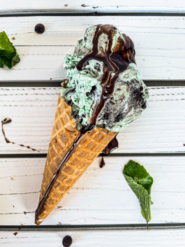 Top view of Grasshopper Ice Cream in cone drizzled with chocolate sauce with two mint leaves